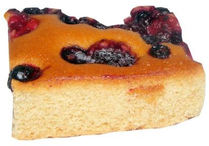 Prodia cake aux fruits des bois 55g x 56 surgelé