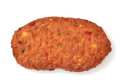 Revogan burger vege légumes bio 75g x 54 surg