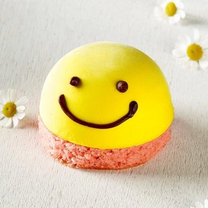 Prodia gâteau smiley 85g x10
